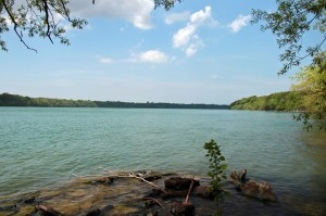 Stella Niagara Preserve in Lewiston NY from WNY Land Conservancy