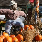 scarecrow from Mischler's Florist and Greenhouses in Williamsville NY