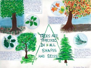 2012 Arbor Day school poster by Hershini Paray
