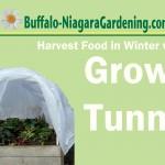 grow tunnel in Buffalo NY