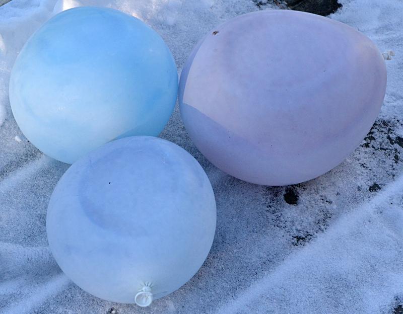 Quirky Way To Add Color To Your Winter Garden Frozen Spheres Molded Inside Balloons Buffalo Niagaragardening Com