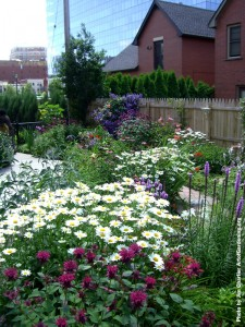 Evergreen Health Victorian Garden in Buffalo NY by Jim Charlier