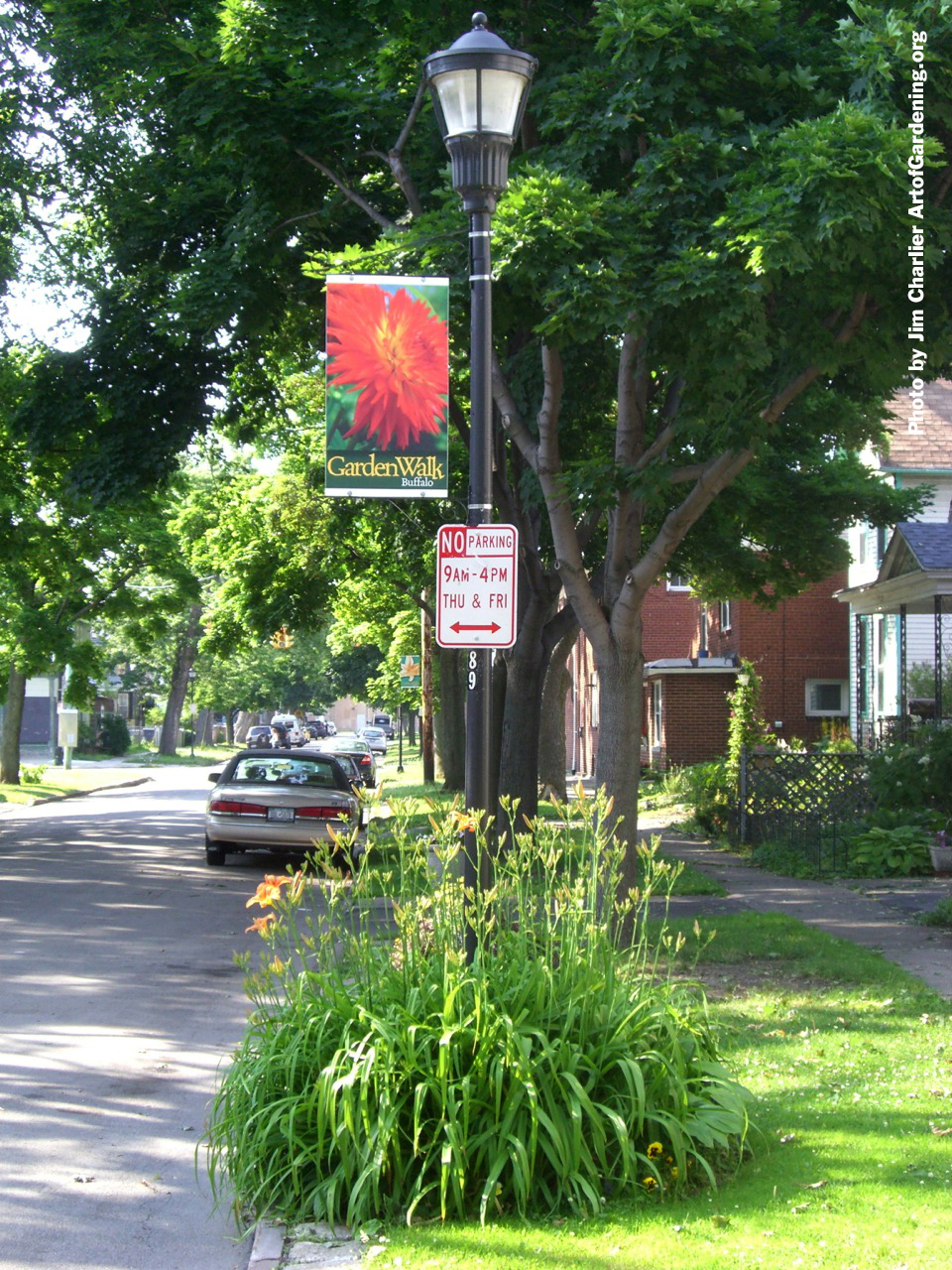 Garden Walk Buffalo pole banners by Jim Charlier