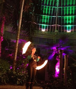 Live entertainment will include Spun Out Fire. Photo courtesy Buffalo and Erie County Botanical Gardens