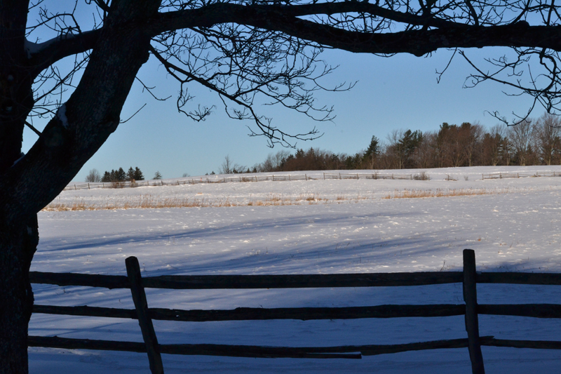 fence and snowy field in Knox Farm State Park East Aurora NY