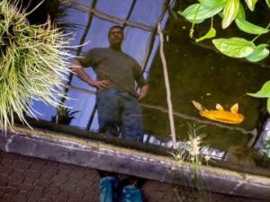 reflection in water by Stephen Rinaldo at Buffalo Botanical Gardens