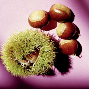 chestnuts from One Gree World