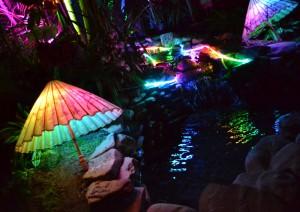 parasols at Night Lights in Buffalo NY