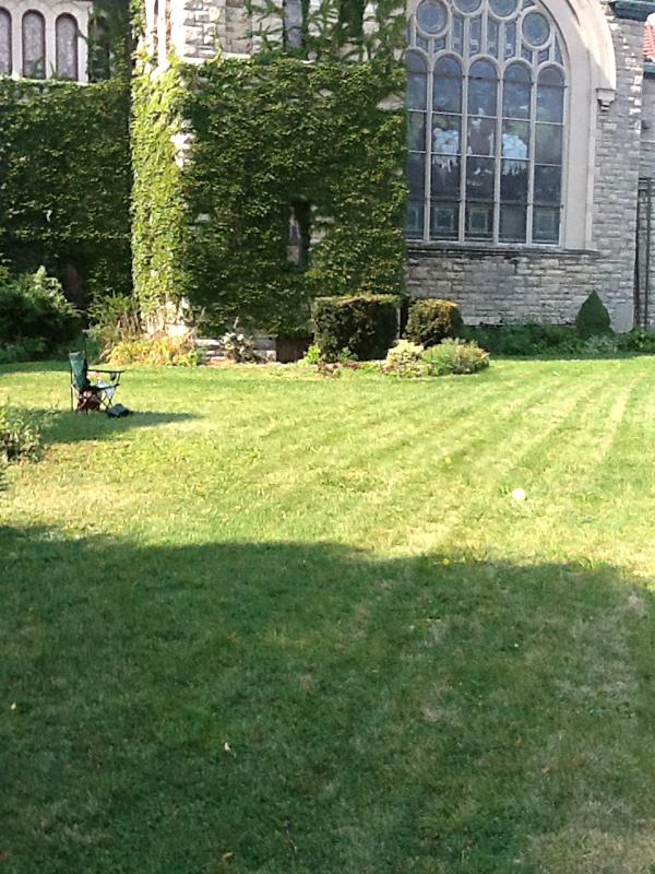 area to become Shakespeare garden in Buffalo courtesy Cathy Prion Sarata