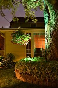 Ken-Ton Saturday Night Lights 2011