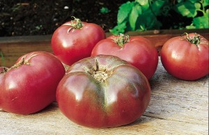 Tomato CherokeePurple courtesy Burpee Home Gardens