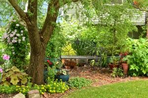 front garden on Parkside Garden Walk in Buffalo NY