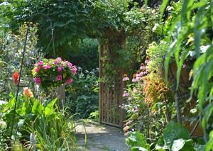 path through garden in Buffalo NY