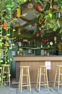 tiki bar in backyard in Buffalo NY