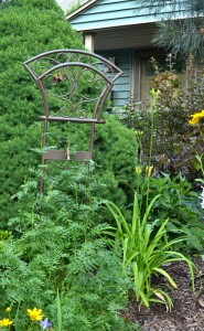 trellis recycled from a garden hose holder in Williamsville NY