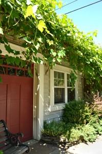 grape arbor over garage door in Buffalo NY