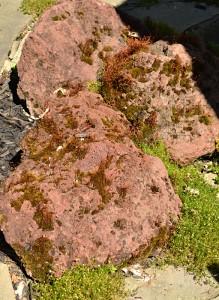 lava rocks on patio in Buffalo NY