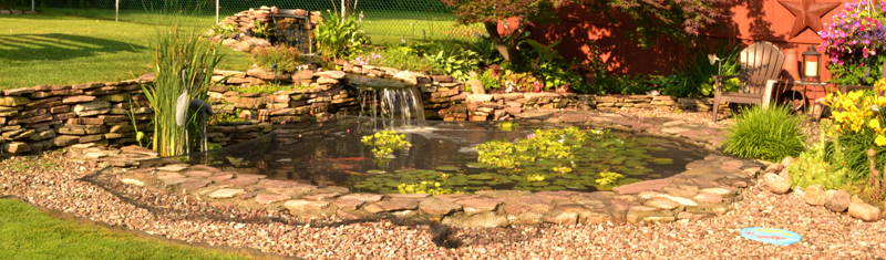 pond and waterfall in Amherst NY