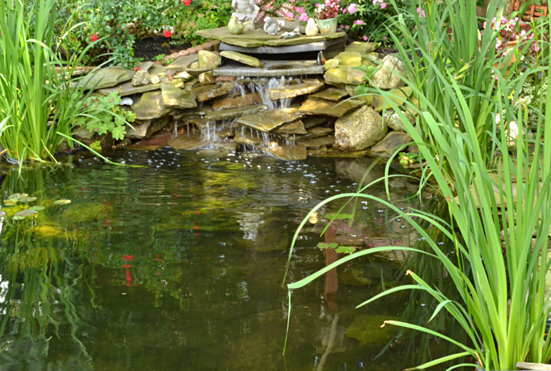 pond and waterfall in West Seneca NY