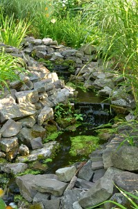 stream with waterfalls flows to pond in Lockport NY
