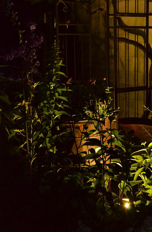 uplight floodlight in Tonawanda NY garden