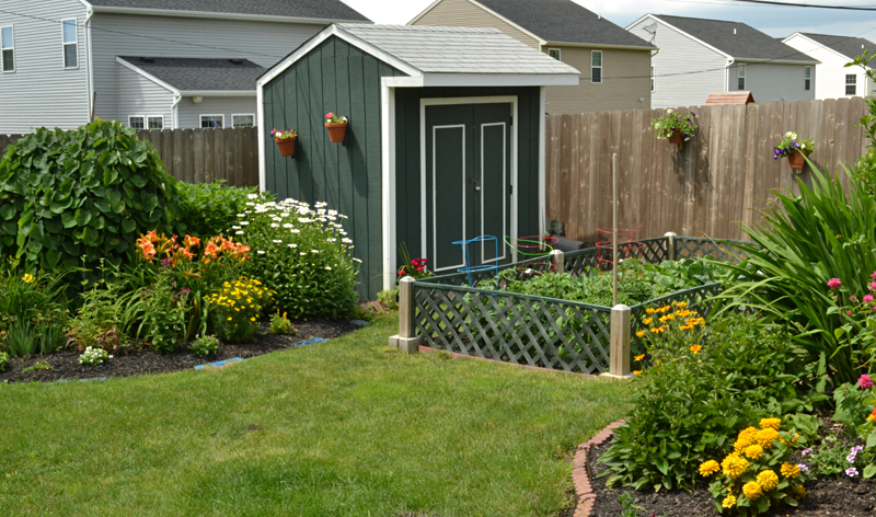 vegetable garden and shed in West Seneca NY