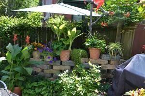 wall and plants hides hot tub in Buffalo NY