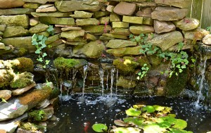 waterfall along back of pond in Buffalo NY