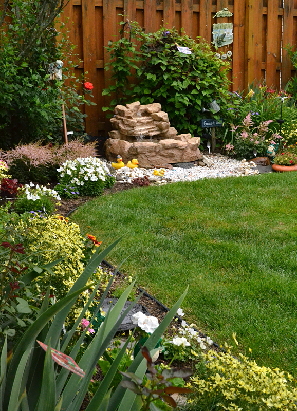 Slow growing shrubs create low maintenance garden for Low maintenance perennial bushes
