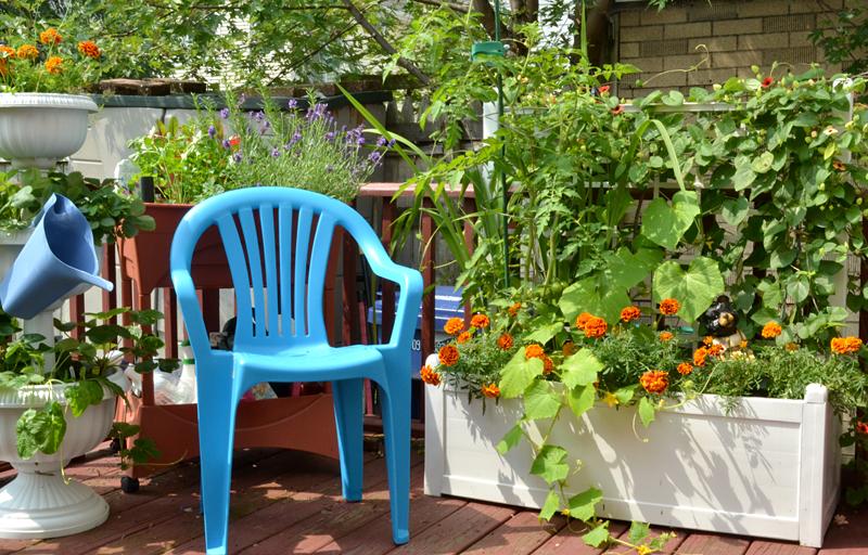 big planter on deck in Buffalo NY