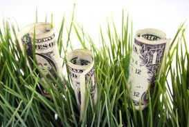 Money in grass for sweepstakes