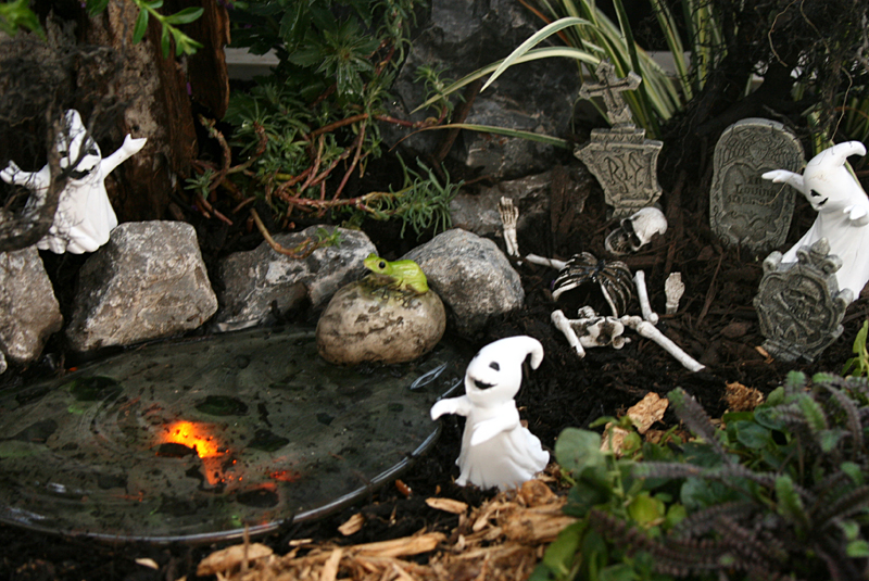Haunted Lagoon fairy garden from Mischler's in Williamsville NY