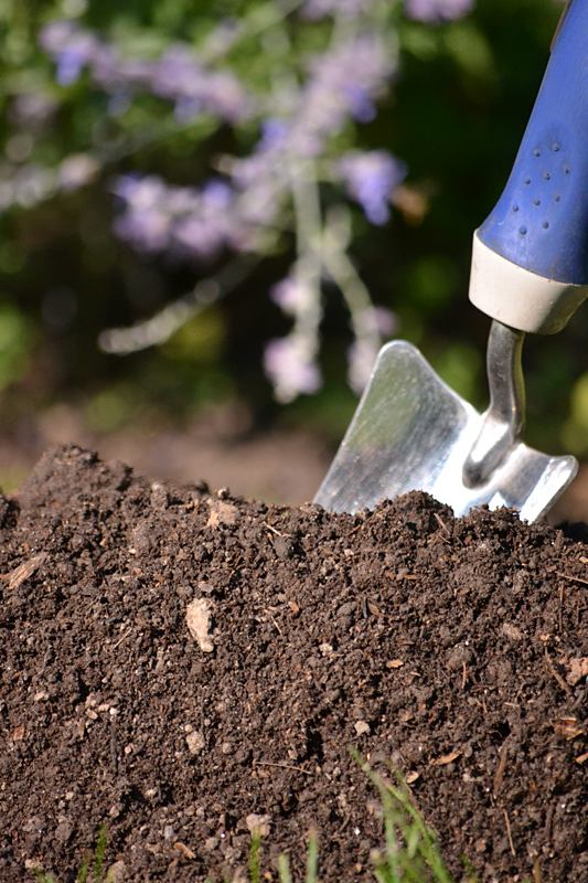 closeup soil and trowel in Western New York garden