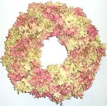 panicle hydrangea wreath