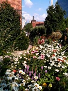 Evergreen Health Services Victorian Garden from Garden Walk Buffalo