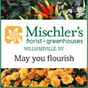 Mischler's fall logo