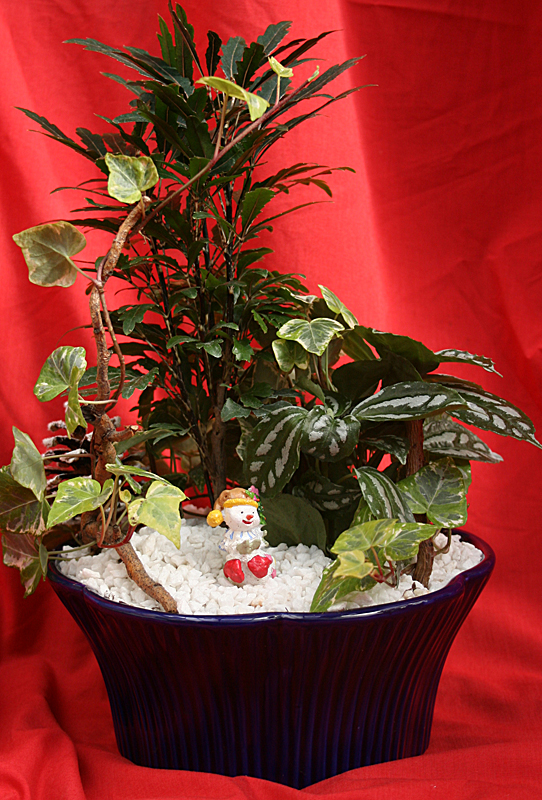 miniature holiday garden from Mischler's