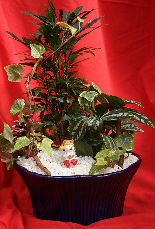 miniature holiday garden from Mischler's