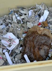 shredded paper for compost