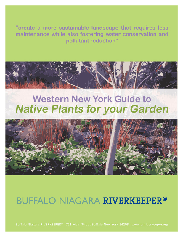 Native-Plant-Guide from Buffalo Niagara Riverkeeper