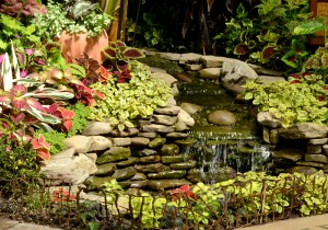 waterfall donated by Garden Friends of Clarence to Buffalo Botanical Gardens