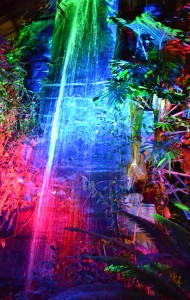 waterfall at light show 2014 Buffalo Botanical Gardens