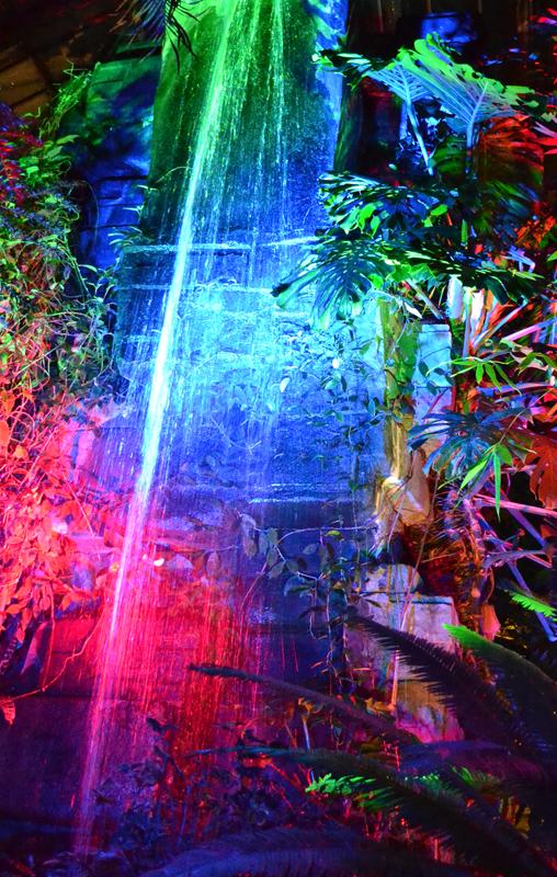 All New Light Show Called Lumagination Set At Botanical Gardens Buffalo