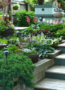 steps in Whittemore garden in Hamburg NY