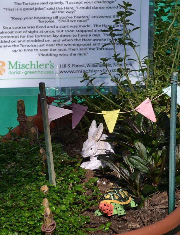 hare and tortoise fairy garden at Mischler's in Williamsville
