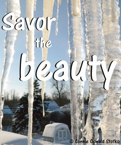 savor the beauty poster copyright Stofko