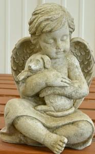 angel cuddling dog at Goodman's in Niagara Falls