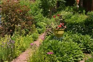 path through Brooks garden in Buffalo NY