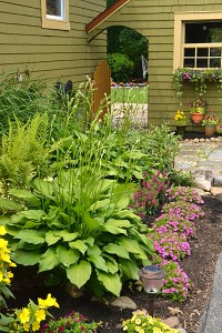side garden entrance in Williamsville NY