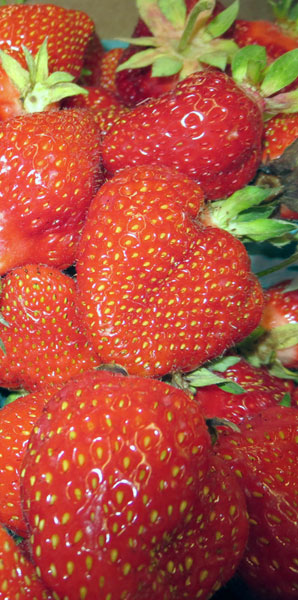 strawberries-from-Goodman's-Farm-Market